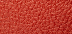 Special Leather Dark red 66